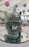 Birdcage filled with Gypsophila