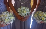 Gypsophila Handtied with white Roses – Gosfield Hall, Gosfield Essex